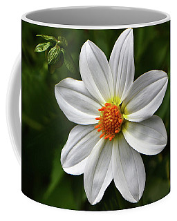 Coffee Mug featuring the photograph White Dahlia 003 by George Bostian