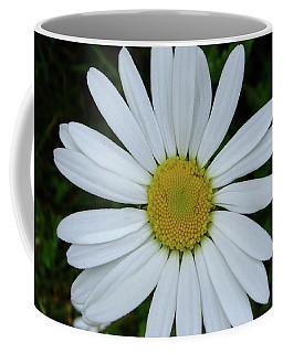 White Daisy Coffee Mug
