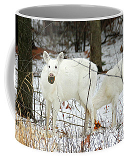 White Deer With Squash 3 Coffee Mug