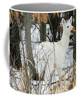 White Doe With Squash Coffee Mug