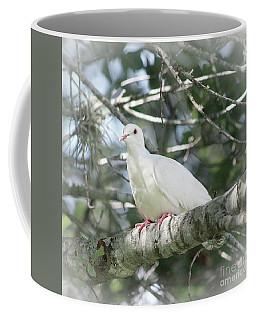 White Dove Messenger Coffee Mug