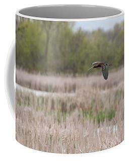 White-faced Ibis 2017-3 Coffee Mug