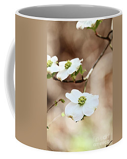 White Flowering Dogwood Tree Blossom Coffee Mug by Stephanie Frey