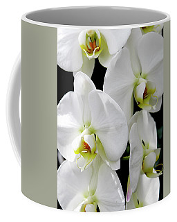 Coffee Mug featuring the photograph White Orchid by Melinda Blackman