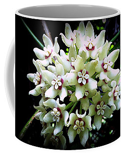 White Flowers Of Paleaku Gardens Coffee Mug