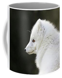 White Fox Up Close Coffee Mug