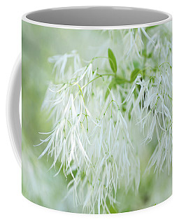 White Fringetree Coffee Mug