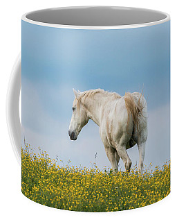 White Horse Of Cataloochee Ranch - May 30 2017 Coffee Mug