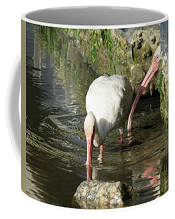 White Ibis Couple Coffee Mug