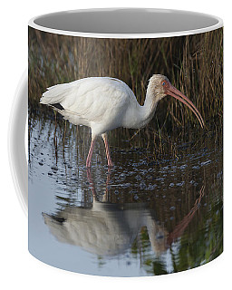 White Ibis Feeding Coffee Mug