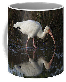 White Ibis Feeding In Morning Light Coffee Mug