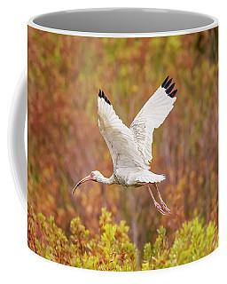 White Ibis In Hilton Head Island Coffee Mug