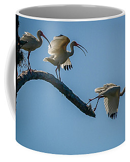White Ibis Takeoff Coffee Mug