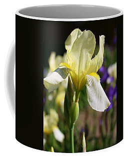 Coffee Mug featuring the photograph White Iris 2 by Bruce Bley