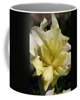 Coffee Mug featuring the photograph White Iris by Bruce Bley