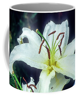 Coffee Mug featuring the photograph White Lily by John Brink