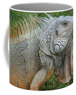White Lizard Coffee Mug