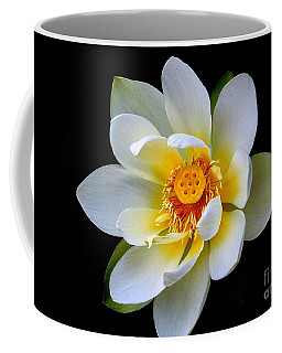 White Lotus Flower Coffee Mug