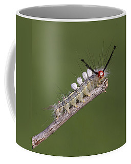 White-marked Tussock Moth Coffee Mug