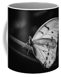 White Morpho Black And White Coffee Mug