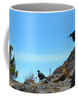 Coffee Mug featuring the photograph White-necked Raven Pair On Kilimanjaro by Jeff at JSJ Photography