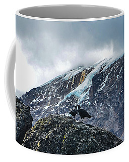 White-necked Raven Pair Under Kilimanjaro Summit Glacier Coffee Mug