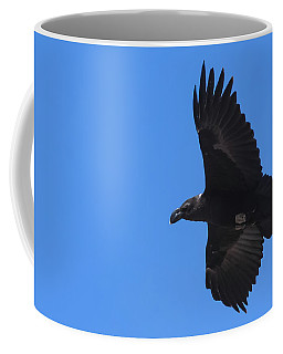 Coffee Mug featuring the photograph White-necked Raven Soaring Along Kilimanjaro by Jeff at JSJ Photography