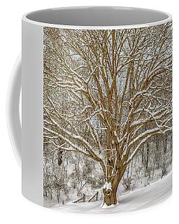 White Oak In Snow Coffee Mug