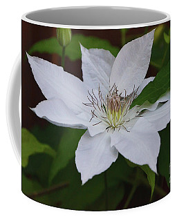 Coffee Mug featuring the photograph White On Green Beauty by Debby Pueschel