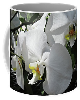White Orchid Bloom Duo Coffee Mug