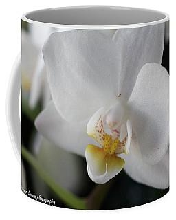 White Orchid Coffee Mug by Nance Larson