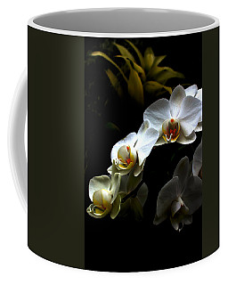 White Orchid With Dark Background Coffee Mug