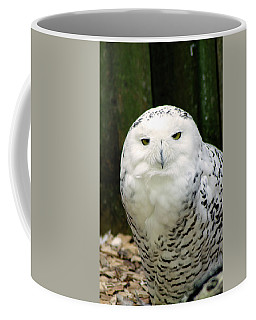 White Owl Coffee Mug