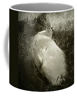 White Peacock Lounging In The Shade Coffee Mug by Katie Wing Vigil