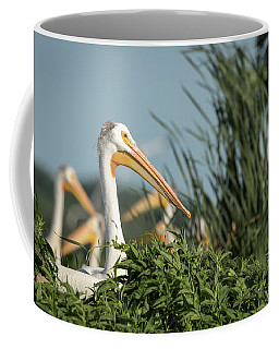 Coffee Mug featuring the photograph White Pelican 7-2015 by Thomas Young