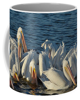 White Pelicans Flock Feeding Coffee Mug