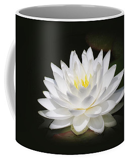 White Petals Glow - Water Lily Coffee Mug by MTBobbins Photography