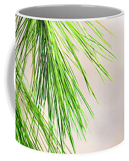 Coffee Mug featuring the photograph White Pine Branch by Christina Rollo