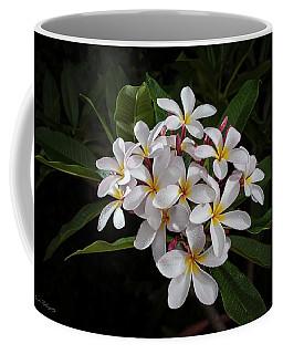 White Plumerias In Bloom Coffee Mug