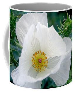 White Prickly Poppy Coffee Mug