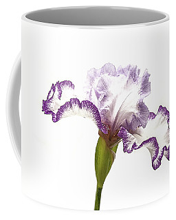 Coffee Mug featuring the photograph White Purple Iris by Scott Cordell