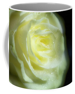 White Rose 4 Soft Coffee Mug