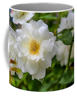Coffee Mug featuring the photograph White Rose by Alison Frank