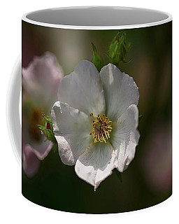 White Rose In Shadow Coffee Mug