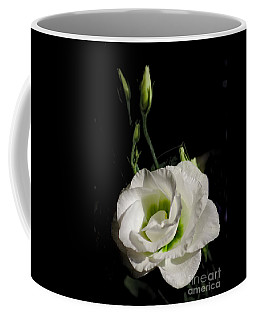 White Rose On Black Coffee Mug