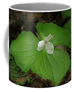 Coffee Mug featuring the photograph White Spring Trillium by Mike Eingle