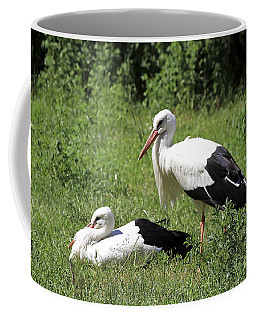 White Storks Coffee Mug by Teresa Zieba