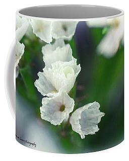 White Straw Flowers Coffee Mug