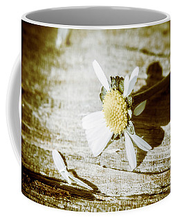 White Summer Daisy Denuded Of Its Petals Coffee Mug
