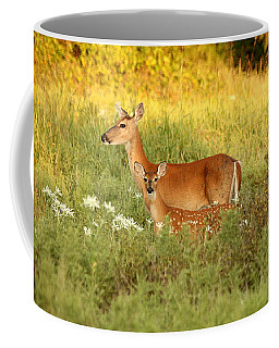 White-tail Doe And Fawn In Meadow Coffee Mug